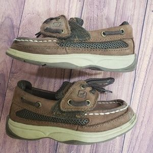 Sperry little boys brown shoes